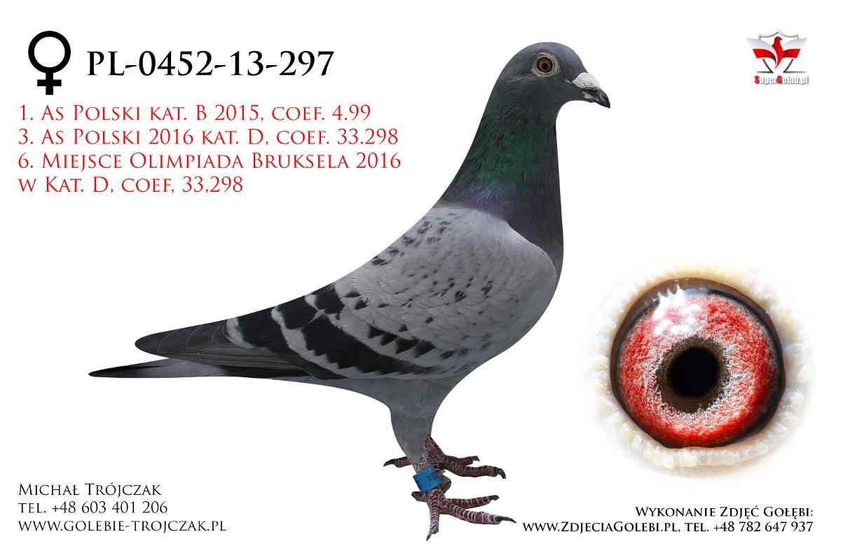 PL-0452-13-297